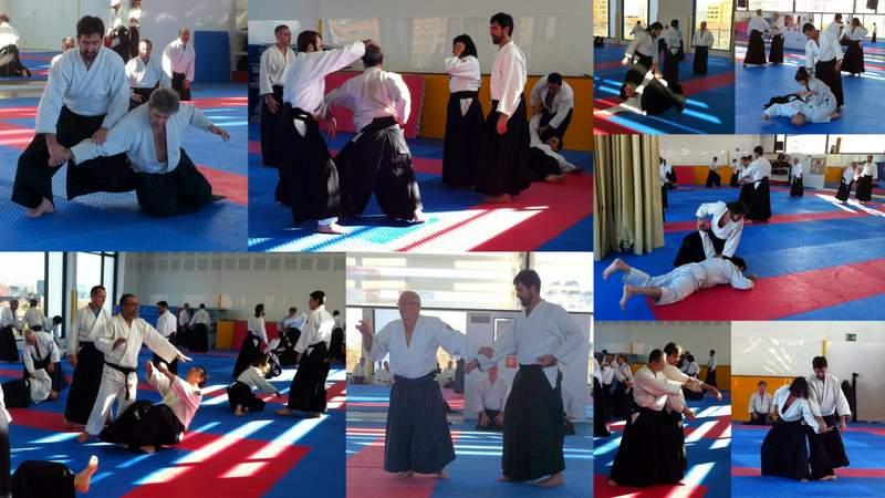Aikido Collage Tarongers 3